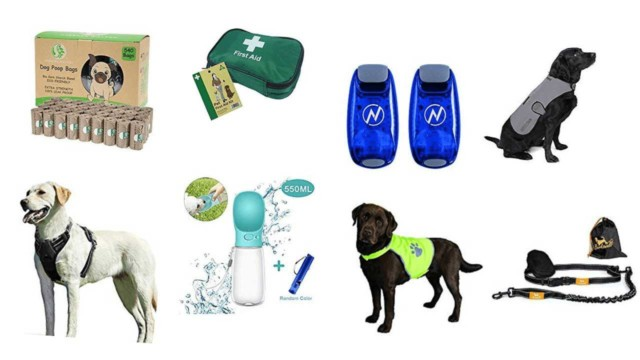 Running with your dog gifts