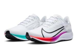 Nike Zoom pegasus 37 (men's)