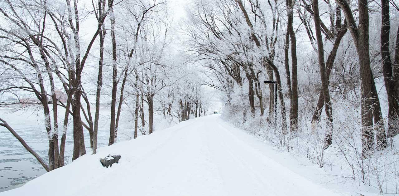 Snowy pavement
